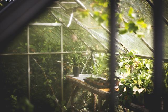 Invernadero solar y bioclimático