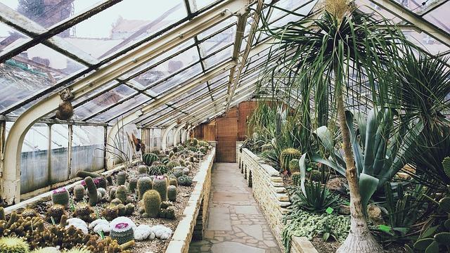 Invernaderos bioclimáticos